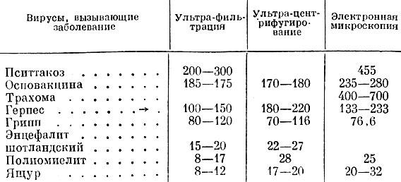 таблица белковых продуктов для похудения