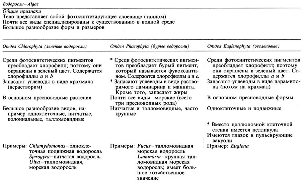 Систематика и основные