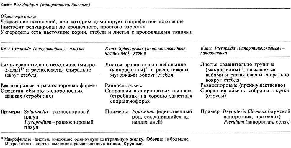 Таблица 3.7.