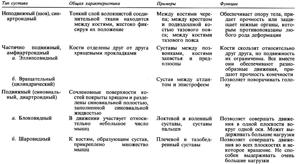 Таблица суставов лечение суставов в нальчике