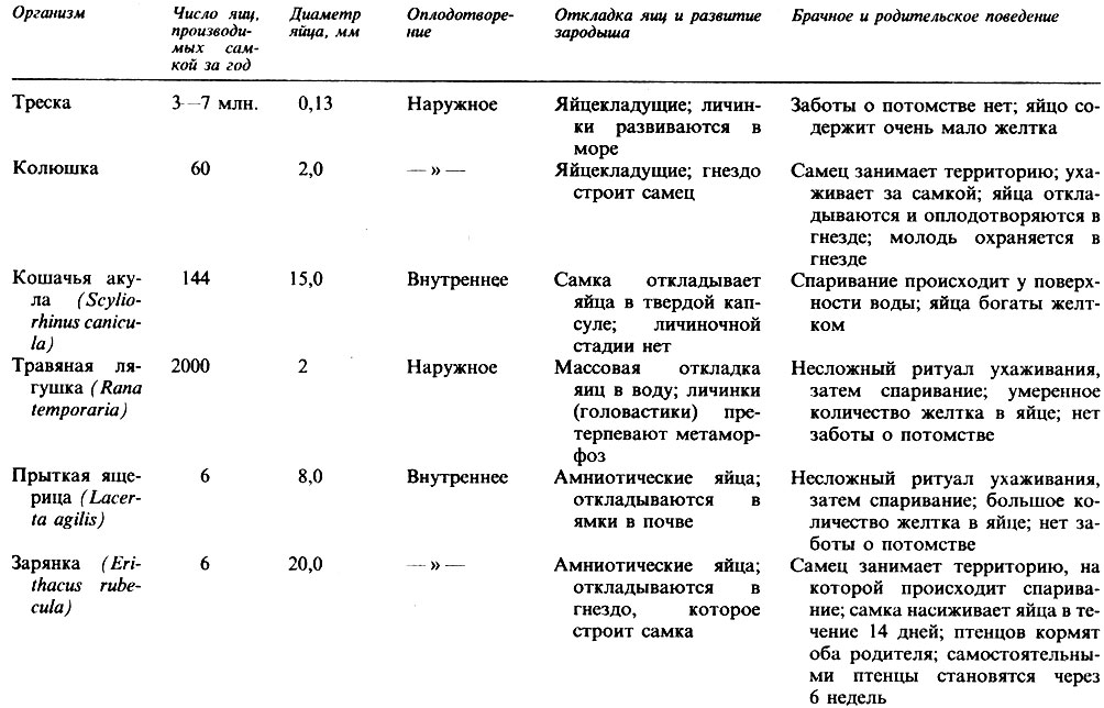 Таблица 20.5.