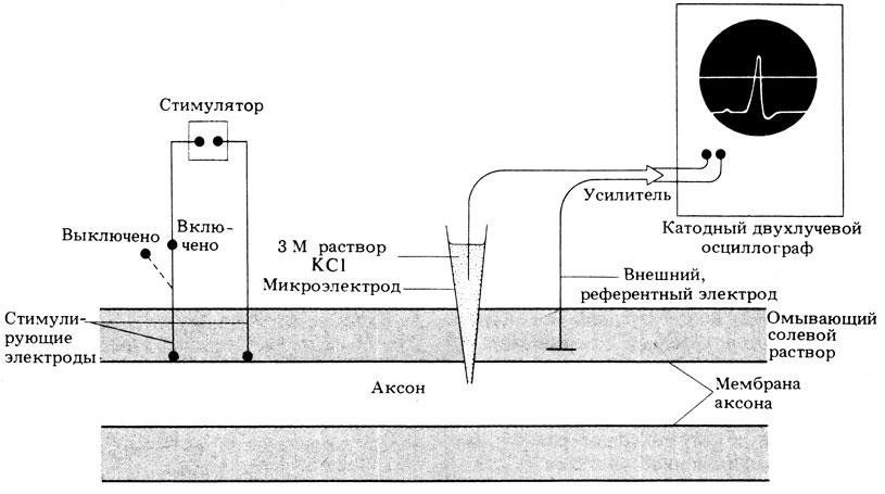 Схема аппаратуры для